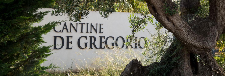 vini cantine De Gregorio Sicily sciacca