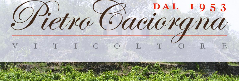 Pietro Caciorgna Farm Company